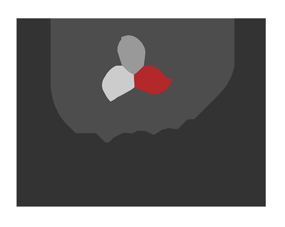 Alma Investigazioni